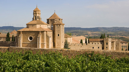 Monastic site of Poblet Wall mural