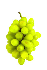 Grape on a white background