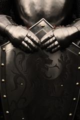 Printed kitchen splashbacks Knights Knight
