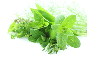 Wall Mural - Green herbs