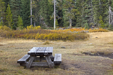 Vintage wooden picnic table in autumn foliage