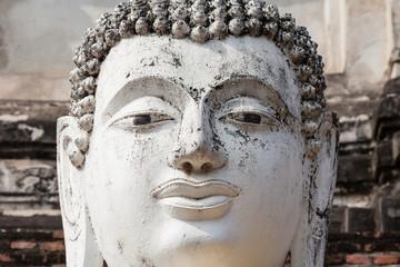 Head of buddha statue