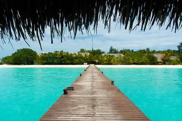 Fotobehang Tropical strand Tropical boardwalk