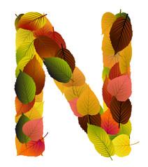 Buchstabe aus Blättern - N