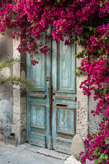 Printed kitchen splashbacks Historical buildings Old wooden door with bougainvillea in Cyprus