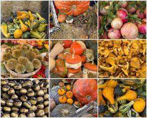 I prodotti dell'autunno