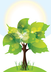 tree with lush green foliage, sunny day, vector illustration