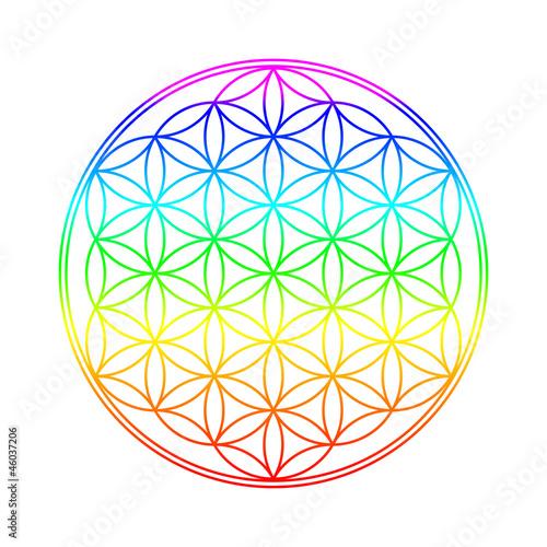 Chakra Farben Blume des Lebens Stockfotos und
