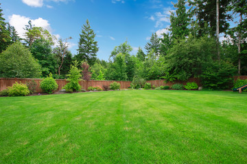 Green large fenced backyard with trees.