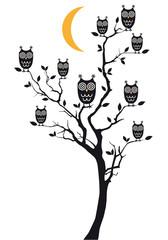 Canvas Prints Owls cartoon owls sitting on tree, vector