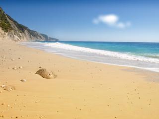 Idyllic tropical sand beach