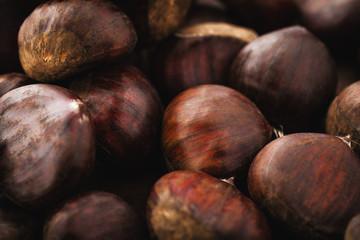 chestnut texture macro