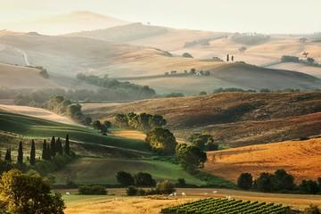 Fototapeta Italian countryside in Tuscany