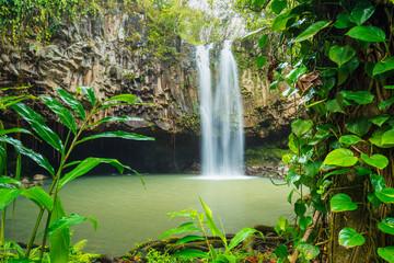 Tropical Waterfall Wall mural