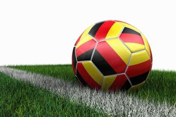 3d Fussball auf Rasen