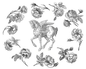 Pegasus with roses
