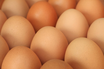 Close up of chicken eggs