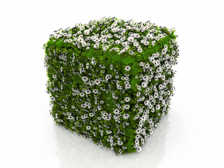a cube with grass and flowers