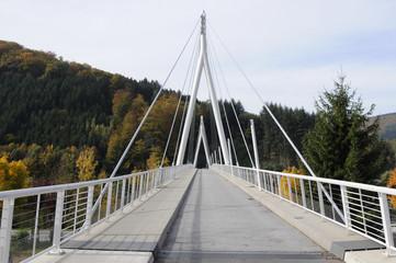 Neckarbrücke in Zwingenberg