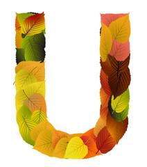 Buchstabe aus Blättern - U