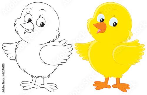 Цыпленок картинка для детей раскраска
