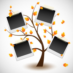 Photo polaroid tree
