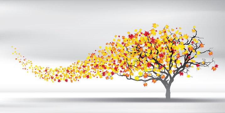 autumn wind tears the leaves, vector