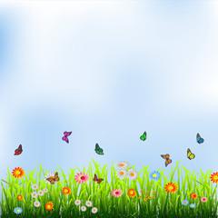 Zelfklevend Fotobehang Vlinders Green grass, flowers and butterflies