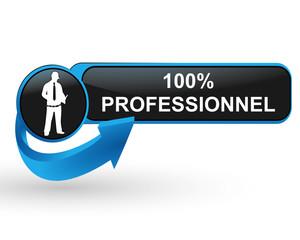 100 pour 100 professionnel sur bouton web design bleu