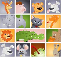Animals Vectors - Profile Icon Concept