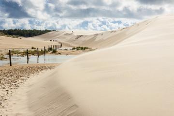 Poland, dunes in Leba. Wall mural