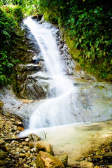 Fototapete - tropical rain forest with waterfall