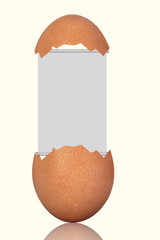 Flipchart in egg