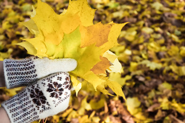 Hands in mittens holding a bouquet of autumn leaves