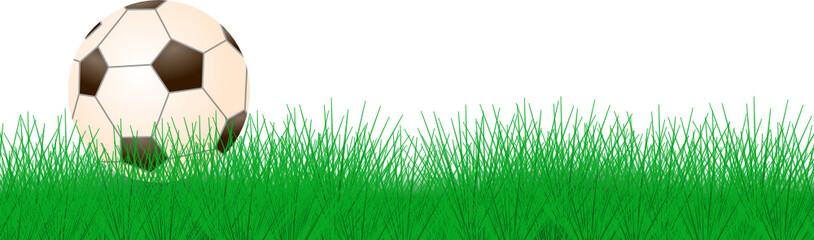 Fußball Gras Banner