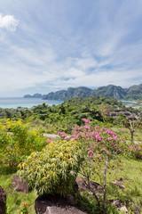 Thailand - Ko Phi Phi Don - Krabi