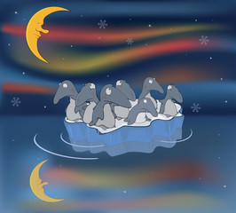 Penguins on an ice floe. Travel
