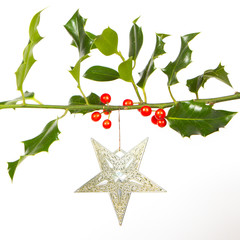 Very old silver star hanging from a twig (butchers broom)