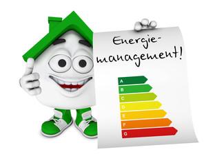 Kleines 3D Haus Grün - Energiemanagement Konzept 1