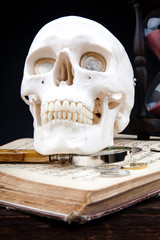 human scull and coins