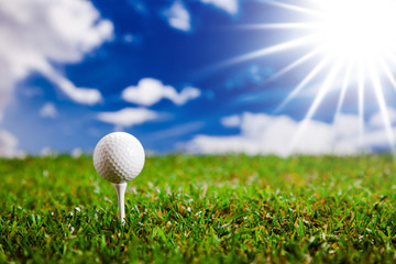 Let's play a round of golf in sunny day!