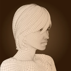 High resolution conceptual 3D wireframe human female