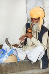 charmer of snake in India