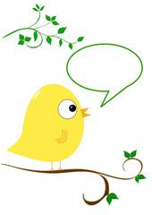 Bird in tree with speech bubble