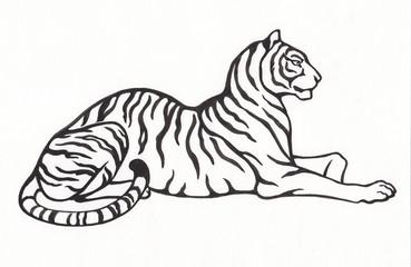 Тигр. Рисунок тушью.