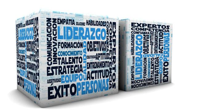 2 cajas aisladas y conceptos de liderazgo