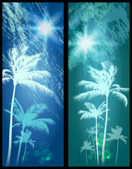 Wall Mural - Exotic Palm Trees Background Banners