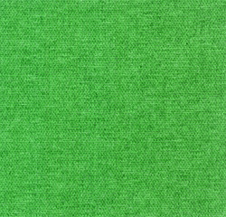 Green fabric texture detail (high. res. scan)