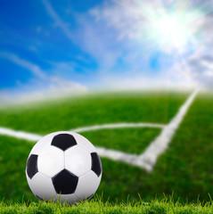 soccer ball on the green grass