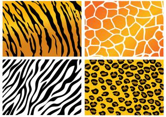 Animal Skin pattern background